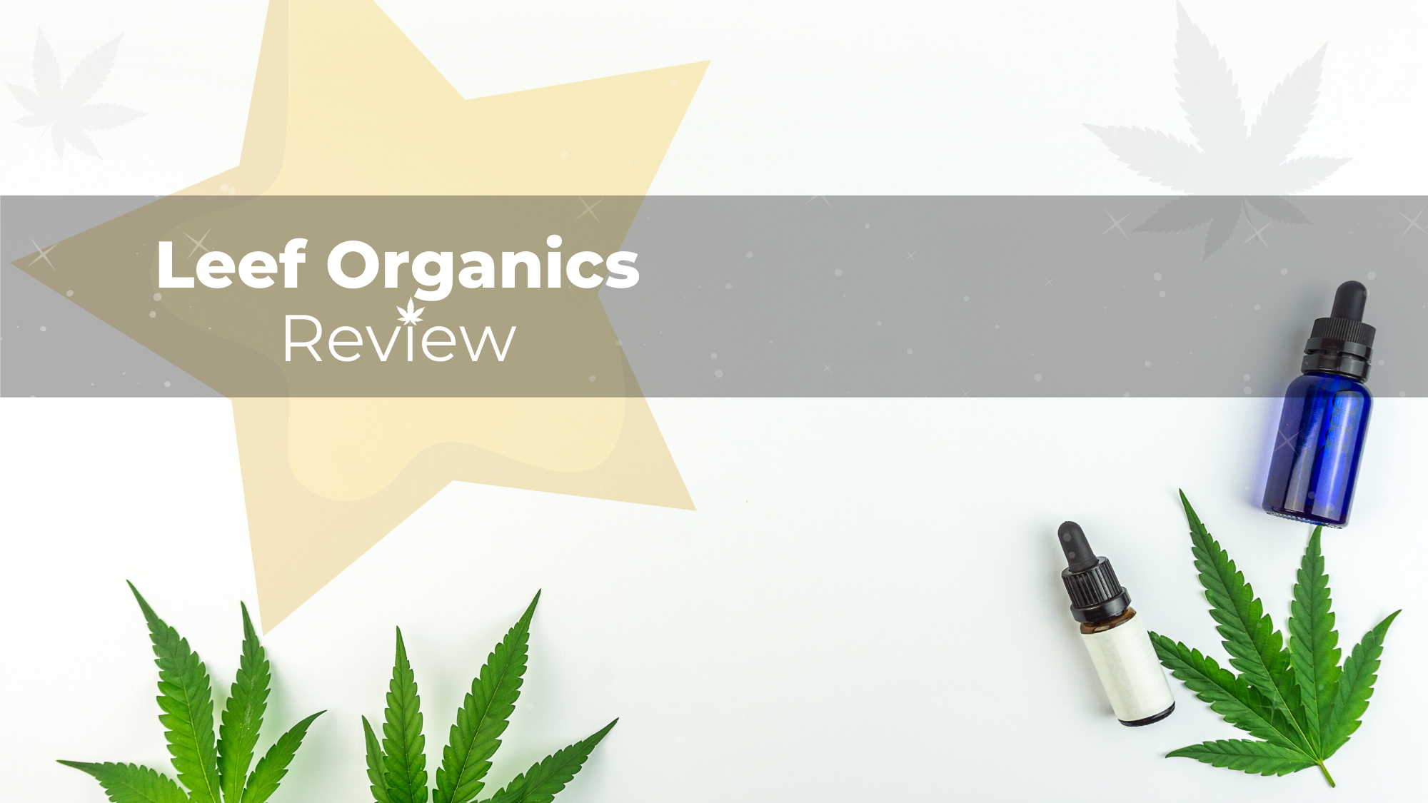 Leef Organics CBD Review