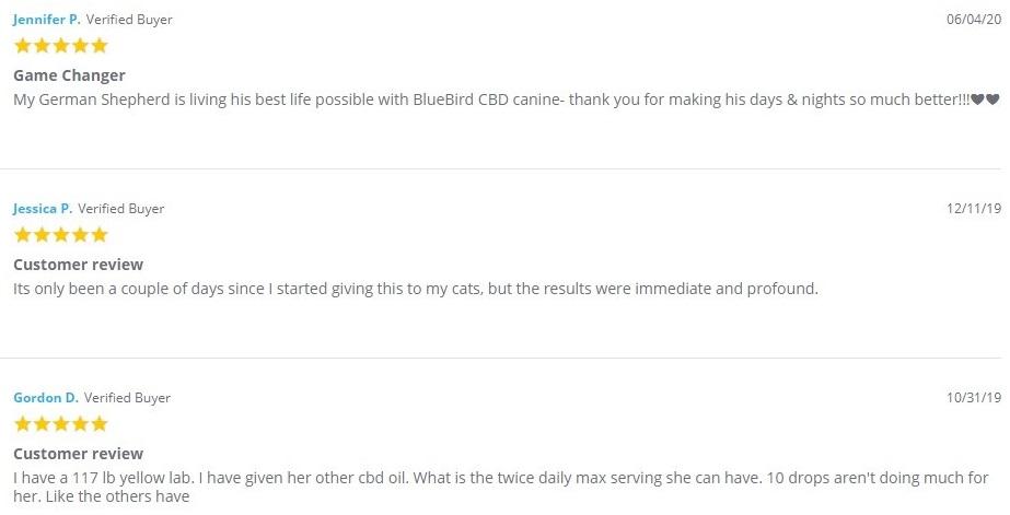 Bluebird Botanicals CBD For Pets Customer Reviews