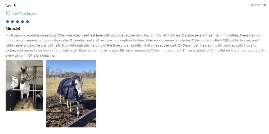 Canna Pet CBD for Horses Customer Reviews