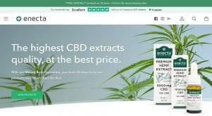 Enecta CBD Review