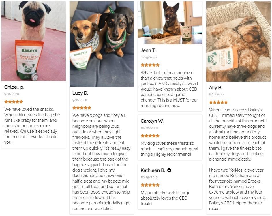 Baileys CBD Dog Chews Customer Reviews