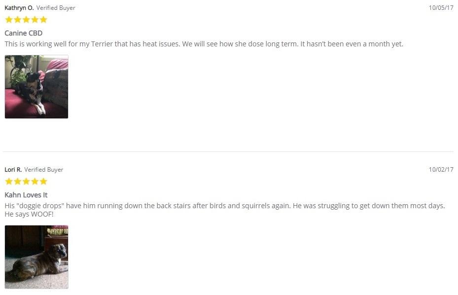 CBD American Shaman CBD For Pets Customer Reviews