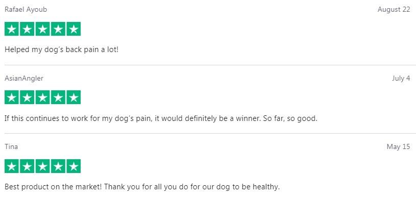 Kats Naturals CBD For Pets Customer Reviews